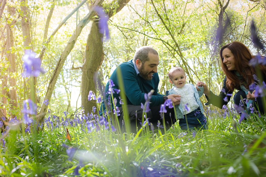 Warwickshire Bluebell Woods photo sessions
