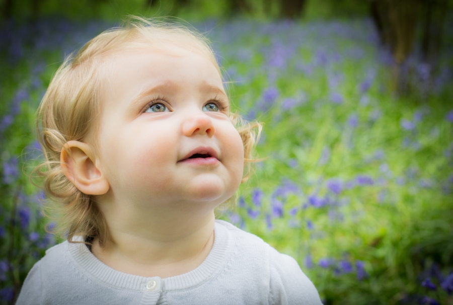 Offspring Photography bluebell woods