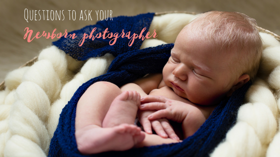 Questions to ask your photographer blog post