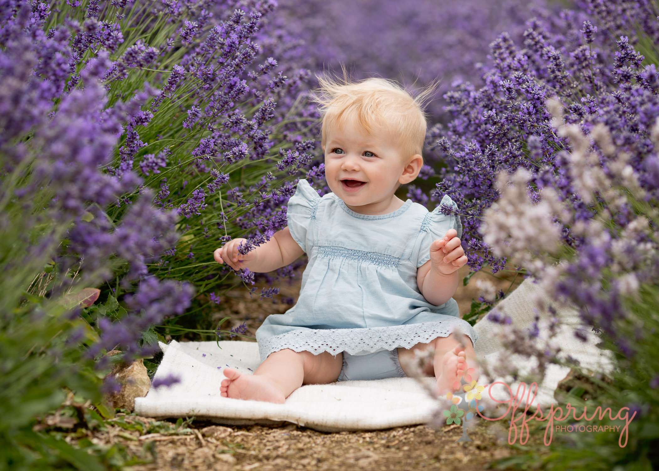 baby in lavender by Offspring Photography, family photographer