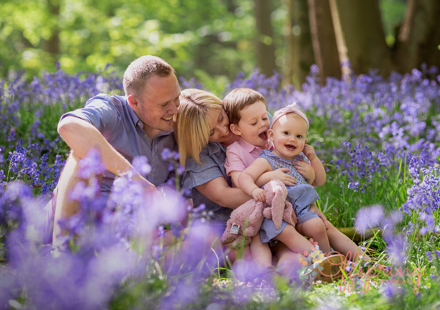 Family photoshoots in bluebell woods